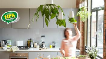 H καρδιά του σπιτιού είναι η κουζίνα! Ξεκινήστε την … «πρασινοποίηση» της, τοποθετήστε φυτά που καθαρίζουν τον αέρα και ζήστε σε ένα πιο υγιές περιβάλλον χρησιμοποιώντας «καθαρά» καύσιμα! Κάντε την κουζίνα σας... «πράσινη!»