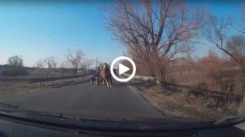Αλογο κάνει… σφήνα σε αμάξι