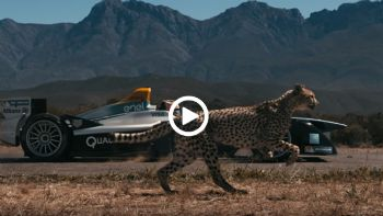 Formula E vs Cheetah